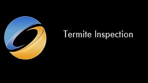 Termite Inspection Sample Video